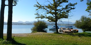 Luxuscamping - Wallersee - Chalets am Wallersee - Variante 3