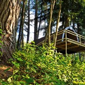 Luxuscamping: Panorama Wood-Lodge - Wood-Lodges am Nature Resort Natterer See