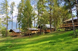 "Luxuscamping - Art der Unterkunft: Lodgezelt - Tiroler Unterland - Safari-Lodge-Zelt ""Elephant"" am Nature Resort Natterer See"
