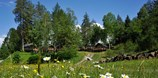 "Luxuscamping - W-Lan - Tirol - Safari-Lodge-Zelt ""Elephant"" am Nature Resort Natterer See"