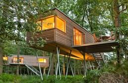 baumhaus resort baumgefl ster ihre glampingunterkunft in. Black Bedroom Furniture Sets. Home Design Ideas