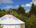 Glampingunterkunft: Bildquelle: http://boutiquecamping.ie/our-accommodation/ - Jurte auf Boutique Camping