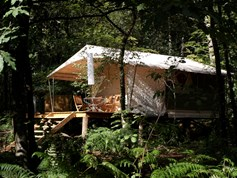 Luxuscamping - WC - Bretagne - La Grande Oust / The Forest Star