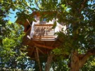 Luxuscamping - Portugal - The Walnut Tree Farm Treehouse