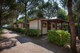 Luxuscamping - WC - Cecina - Mobilheim Tipo B 4+1 Pers. auf Camping Mareblu