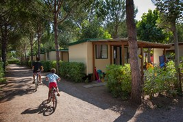 Luxuscamping - WC - Cecina - Mobilheim Tipo A 4+1 Pers. auf Camping Mareblu