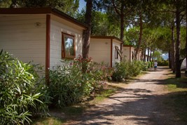 Luxuscamping - WC - Cecina - Mobilheim Deluxe 5 Pers. auf Camping Mareblu