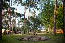 Luxuscamping: Zeltbungalow Rambouillet  - Zeltbungalow Huttopia auf Camping Huttopia Rambouillet