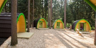 Luxuscamping - W-Lan - Franken - Family-POD am Waldcamping Brombach