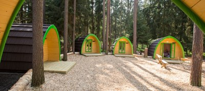 Luxuscamping - W-Lan - Pleinfeld - Family-POD am Waldcamping Brombach