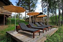 "Luxuscamping: Safari-Lodge-Zelt ""Zebra"" - Safari-Lodge-Zelt ""Zebra"" am Nature Resort Natterer See"