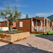 Luxuscamping: Bungalows - Bungalow AZALEA Life auf Campofelice Camping Village