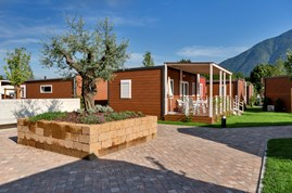 Luxuscamping - Swimmingpool - Tessin - Bungalow AZALEA Life auf Campofelice Camping Village