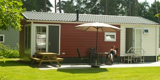 Luxuscamping - Swimmingpool - Overijssel - Chalets auf Camping De Kleine Wolf
