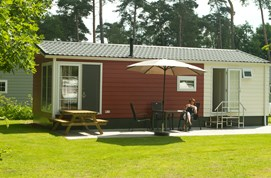 Luxuscamping - Swimmingpool - Nord Overijssel - Chalets auf Camping De Kleine Wolf