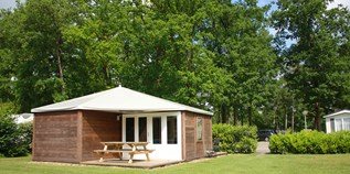 Luxuscamping - Swimmingpool - Nord Overijssel - Woodys auf Camping De Kleine Wolf