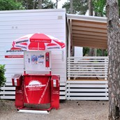 Luxuscamping: Luxusmobilheim von Gebetsroither am Camping Village Mare Pineta